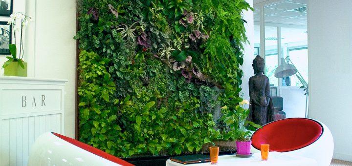 """""""Vertical Garden"""" mit Dekopflanzen"""