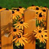 Gartenzäune, Gartenzaun, Holz, Metall, günstig